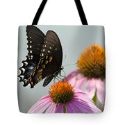 Spicebush Butterfly On Echinacea Tote Bag