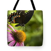 Spicebush Swallowtail Butterfly And Coneflower Tote Bag