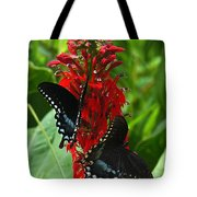 Spicebush Swallowtails Visiting Cardinal Lobelia Din041 Tote Bag