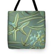 Spicules Of Sponges & Sea Cucumber Lm Tote Bag