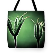 Spider Home Tote Bag