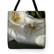 Spider In Narcissus Tote Bag
