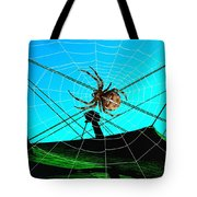 Spider On The Olympic Roof Tote Bag