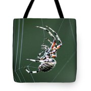 Spider - The Spinner Tote Bag