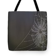 Spider Web Covered In Dew Drops Tote Bag