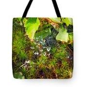 Spider Webs At The Farm Tote Bag