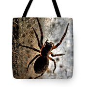 Spiders Home Tote Bag