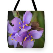 Spiderwort Tote Bag