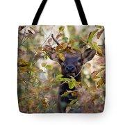 Spike Elk In Brush Tote Bag