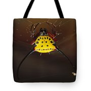 Spiked Spider Gasteracantha Sp In Web Tote Bag