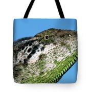 Spiny Chameleon Chamaeleo Verrucosus Tote Bag