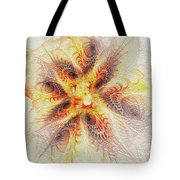 Spiral Collection Tote Bag