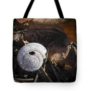 Spiral Shell Game Tote Bag
