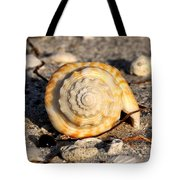 Spirals From The Sea Tote Bag