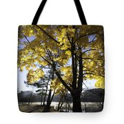 Spirit By The Lake Tote Bag