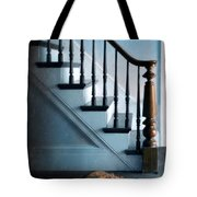 Spooked Cat By Stairs Tote Bag