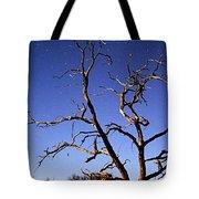 Spooky Tree Tote Bag