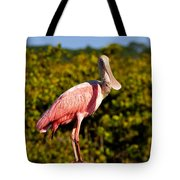Spoonbill Tote Bag by David Lee Thompson