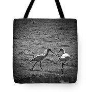 Spoonbills Tote Bag