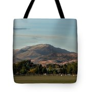 Sport Complex And The Butte Tote Bag by Robert Bales