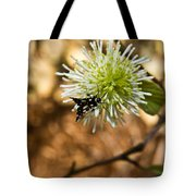 Spotted Moth On Fothergilla Tote Bag