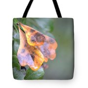 Spotted Oak Leaves In Autumn Tote Bag