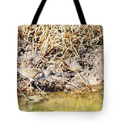 Spotted Sandpiper At The Canal Tote Bag