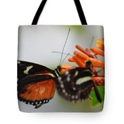 Spotted Tiger Glassywing Tote Bag