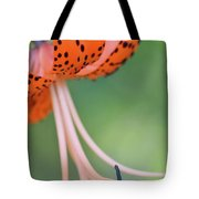 Spotted Tiger Tote Bag