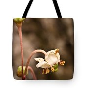 Spotted Wintergreen 1 Tote Bag