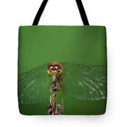 Spread Your Wings And Fly Away Tote Bag