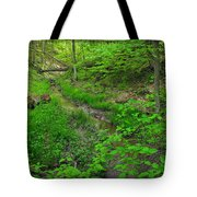 Spring At Cleveland Metro Park Tote Bag