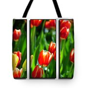 Spring Beauty Triptych Series Tote Bag