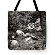 Spring Creek II Tote Bag