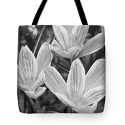 Spring Crocus In Black And White Tote Bag