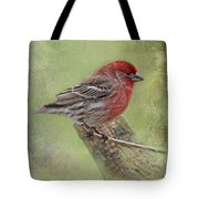 Spring Finch Tote Bag