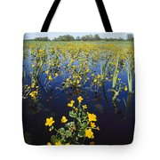 Spring Flood Plains With Wildflowers Tote Bag