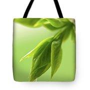 Spring Green Leaves Tote Bag by Elena Elisseeva