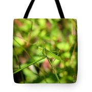 Spring Hopper Tote Bag