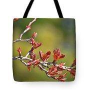 Spring Leaves Greeting Card Blank Tote Bag
