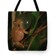 Spring Peeper Tote Bag by Bruce J Robinson