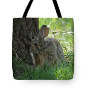 Spring Rabbit Tote Bag