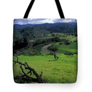 Spring Storm Tote Bag by Kathy Yates
