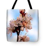 Spring Time Tote Bag