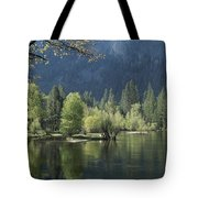 Spring View Of The Merced River Tote Bag