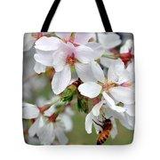 Springtime Weeping Cherry Tree Tote Bag