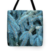 Spruce Conifer Nature Art Prints Trees Tote Bag