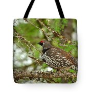 Spruce Grouse Tote Bag