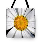 Square Daisy - Close Up Tote Bag