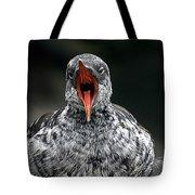 Squawk Tote Bag